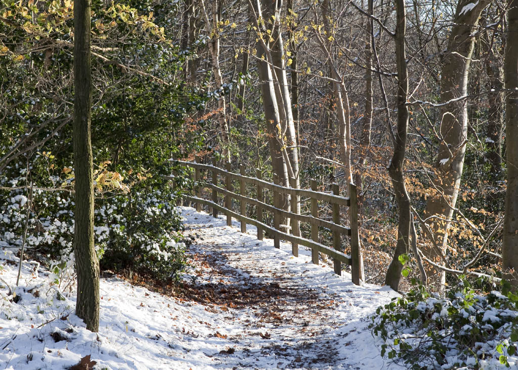 SnowPath_MG_1407